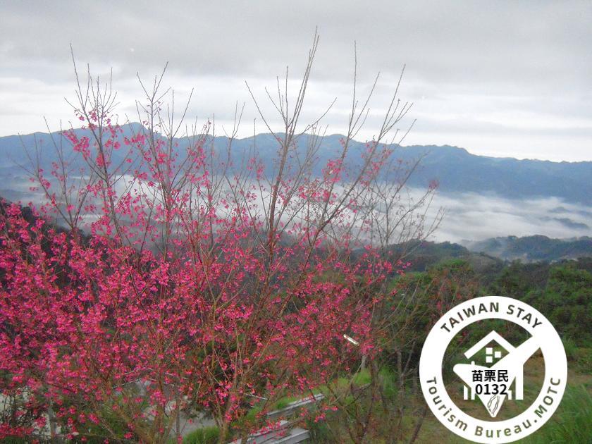 馬拉邦山ホりデーの 山庄(馬拉邦渡假山莊)